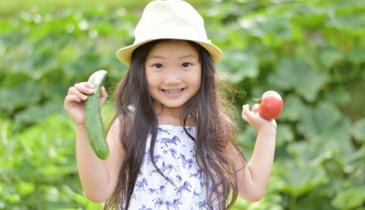 子どもの野菜嫌いを克服したい!攻略方法ワンツースリー